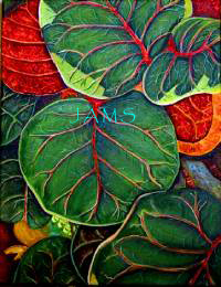 Sea Grape Leaves No. 1 by American Nature Painter, Judith A. Maddox Saylor.