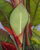 Heliconia No. 4 Painting by American Nature Painter, Judith A. Maddox Saylor.